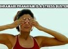 Bhramari Pranayam is a stress buster