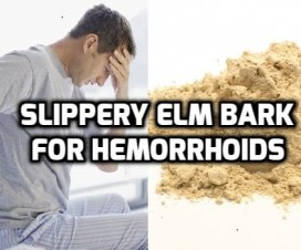 Slippery elm for Hemorrhoids