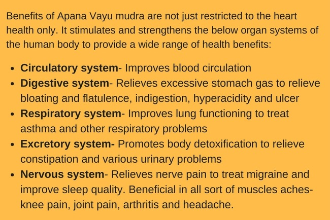 Apana Vayu mudra for blood circulation