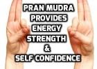 Pran mudra benefits and precautions