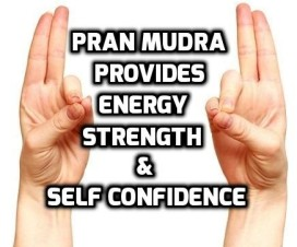 Pran mudra benefits and precautions