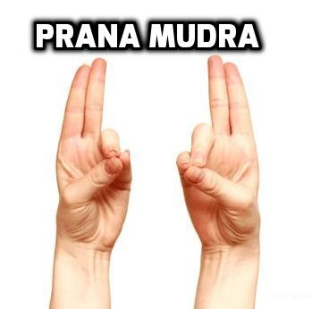 Prana mudra health benefits