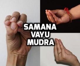 Samana vayu mudra